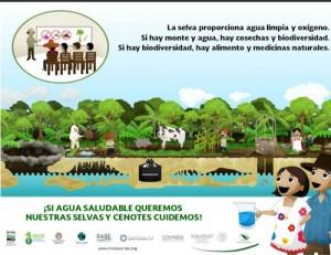 AguaySelvas3